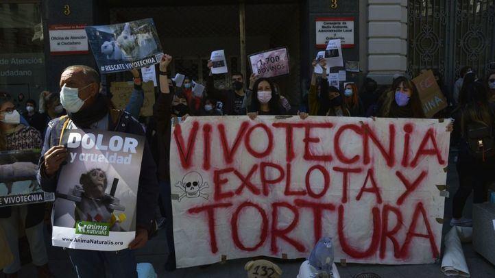 Activistas se manifiestan contra Vivotecnia