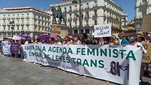 Asociaciones feministas claman contra la nueva Ley Trans