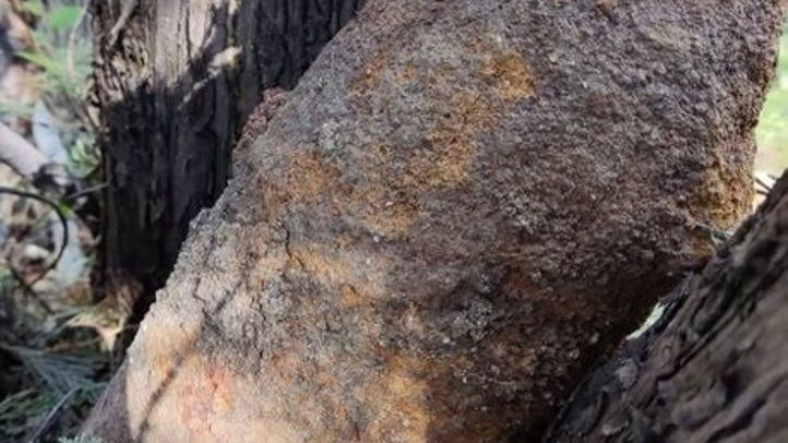 Una obra en el alumbrado público en Carabanchel saca a relucir un proyectil de la Guerra Civil