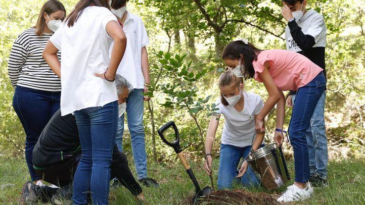 La Princesa Leonor y la Infanta Sofía participan en una plantación de árboles en el Hayedo de Montejo