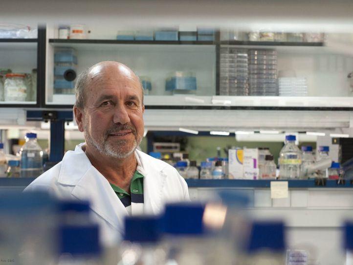 Suspendidos los ensayos en humanos de la vacuna española