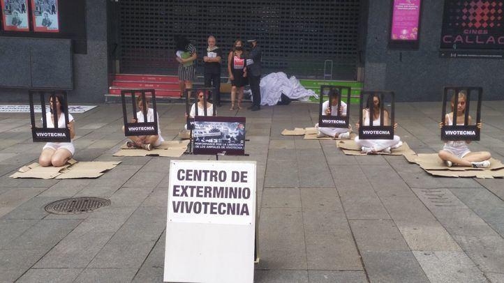 Piden en Callao la liberación de los animales de Vivotecnia