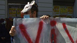 Colectivos animalistas se manifiestan este domingo en Sol contra la nueva temporada de caza en España