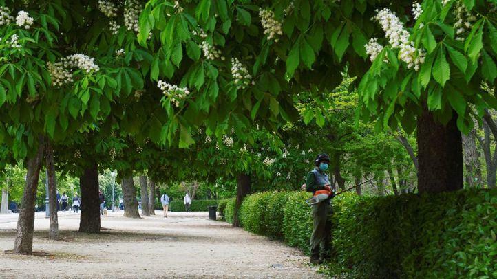 Balizadas varias zonas de El Retiro y ocho parques de Madrid por altas temperaturas