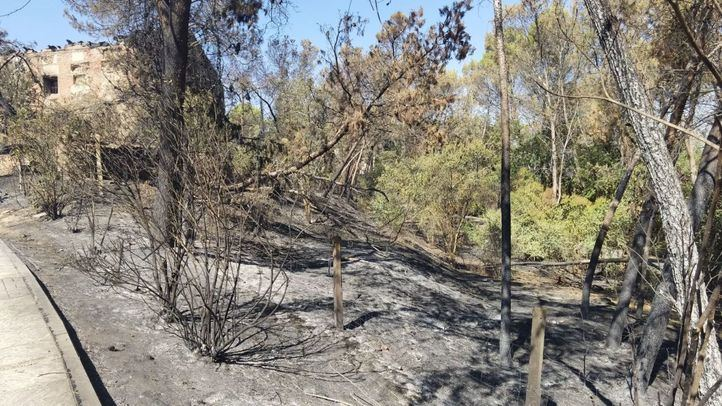 La región lleva registrados este año 259 incendios forestales, el 80% conatos de menos de una hectárea quemada
