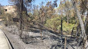 Extinguido el incendio forestal de Batres cinco días después de su inicio