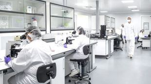 Avanza el ensayo clínico de la vacuna española