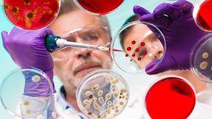 La Fundación Merck premia la búsqueda de tratamientos personalizados para pacientes en materia de Inmuno-Oncología