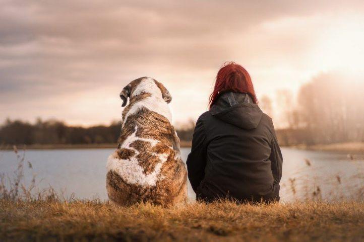 Cada vez es más común velar e incinerar a las mascotas que nos dejan
