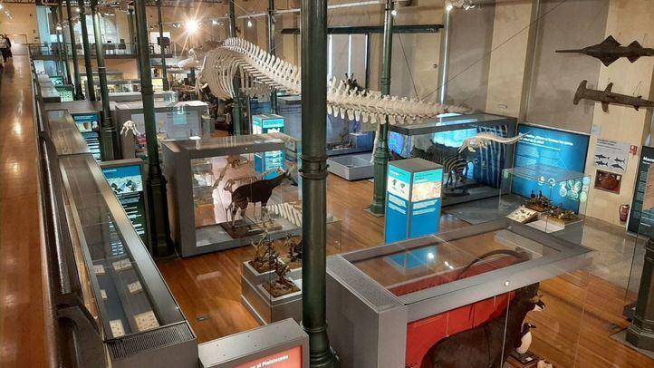 De un gabinete de curiosidades a una institución científica viva: los 250 años del Museo de Ciencias Naturales