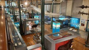 El Museo de Ciencias Naturales cumple 250 años