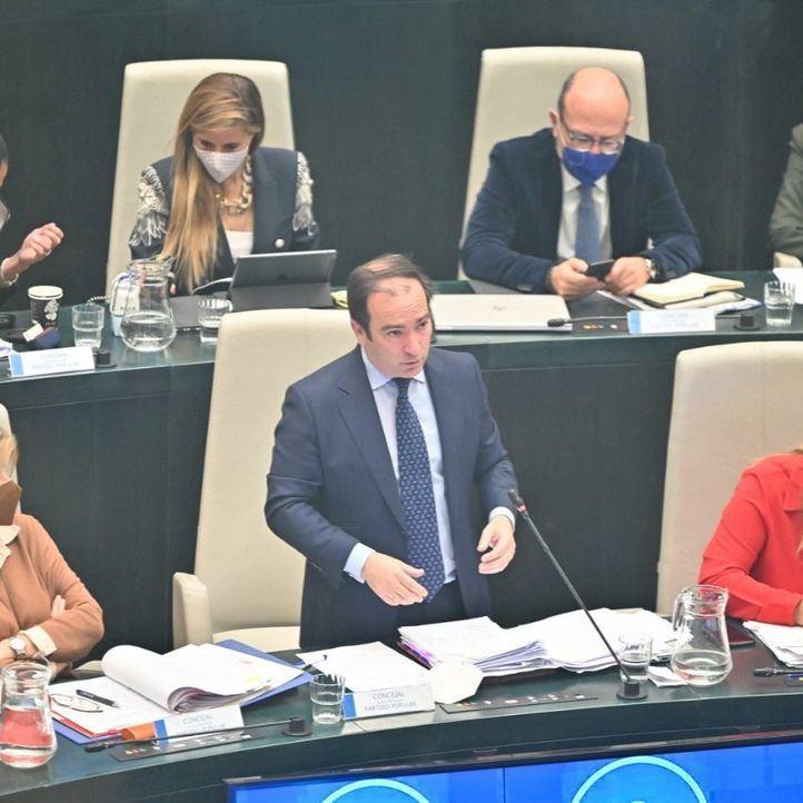 El delegado de Medio Ambiente y Movilidad, Borja Carabante, en el Pleno de Cibeles.