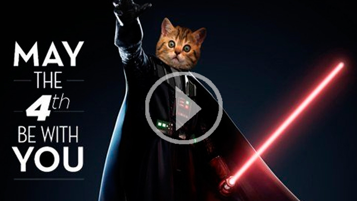 ¿Por qué el Día de Star Wars se celebra el 4 de mayo?