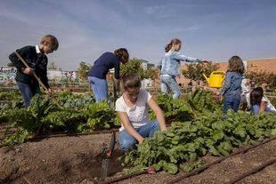 Talleres agroecológicos gratuitos para toda la familia en Huertos Montemadrid