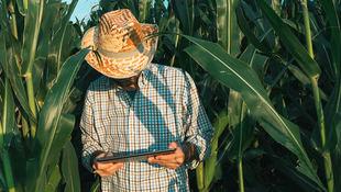 La transformación digital llega a la agricultura