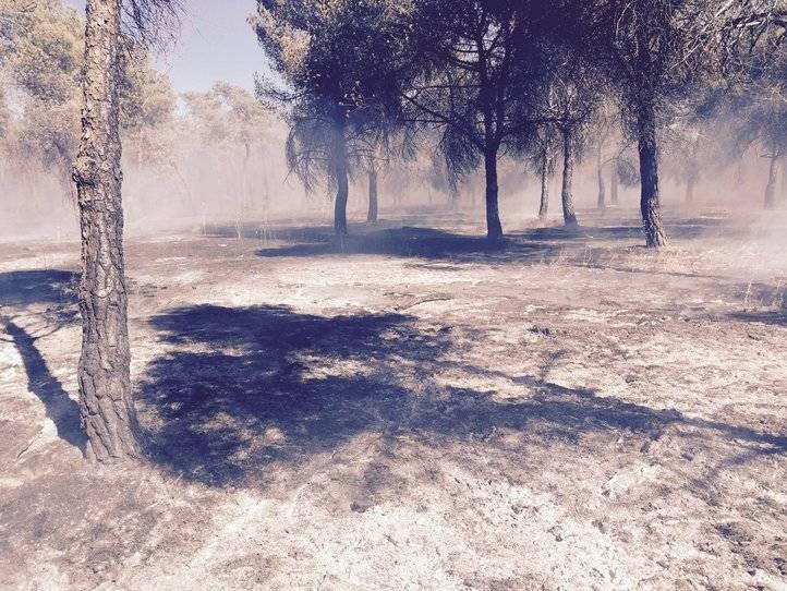 Incendio en Venta la Rubia, entre Madrid y Alcorcón