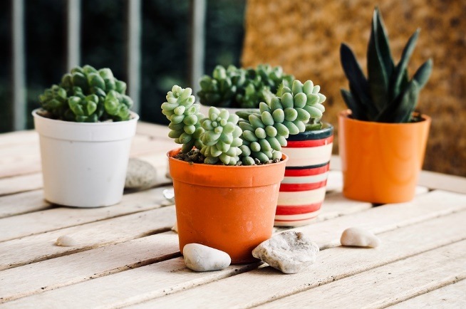 Consejos Para Decorar Y Planificar El Jard N O La Terraza