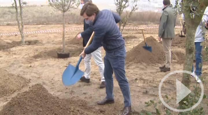 Arrancan las obras del gran parque de Valdebebas