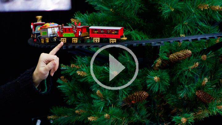¿Cómo recuperar la vida de un árbol de Navidad?
