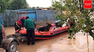 Rescate de dos perros en la riada de Arganda