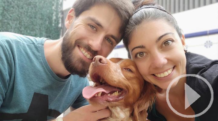 Adoptan a