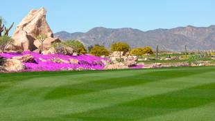 Desert Springs, el mayor campo de golf desértico de Europa
