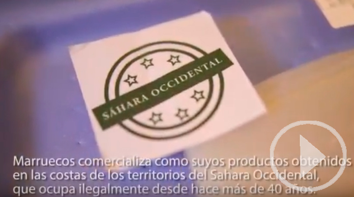 El Sáhara Occidental reclama sus productos