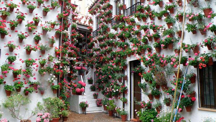 Si la primavera elige una ciudad sería Córdoba y un mes, Mayo