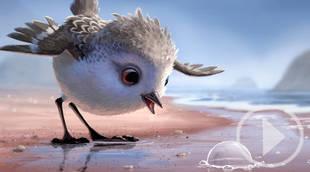 'Piper' el último cortometraje de Pixar y considerado el mejor por la crítica, arrasa en las redes