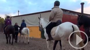 Caballos que ayudan a niños con Síndrome de Dravet