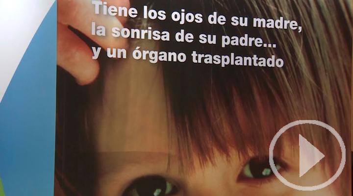 Ifema acoge el Congreso Mundial de Trasplantes