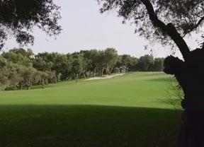Pura esencia de golf