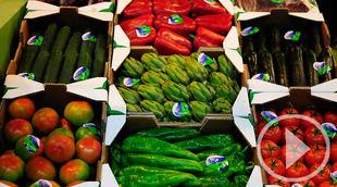 Las verduras ultracongeladas, saludables y sostenibles