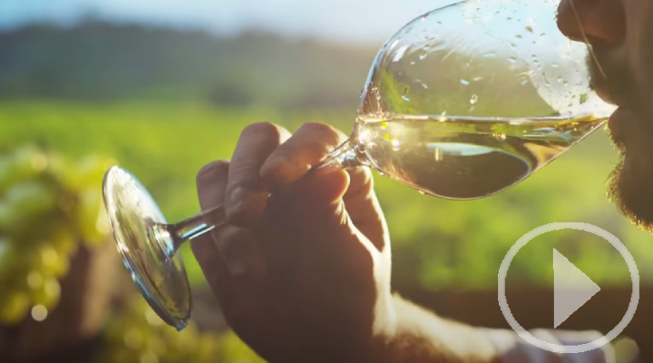 El vino, componente esencial de la dieta mediterránea