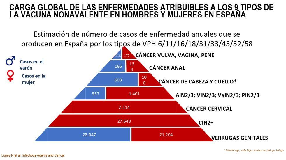 precios vacuna virus papiloma humano