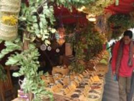 La Edad Media envolverá a Torrejón con un Mercado Medieval